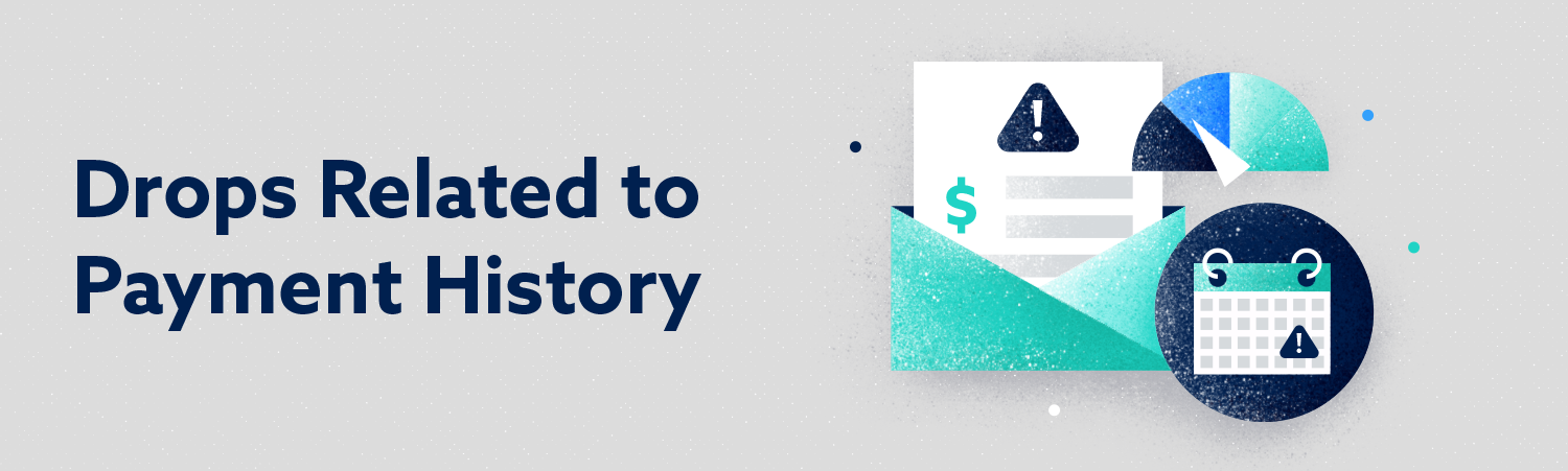 drops related to payment history header image